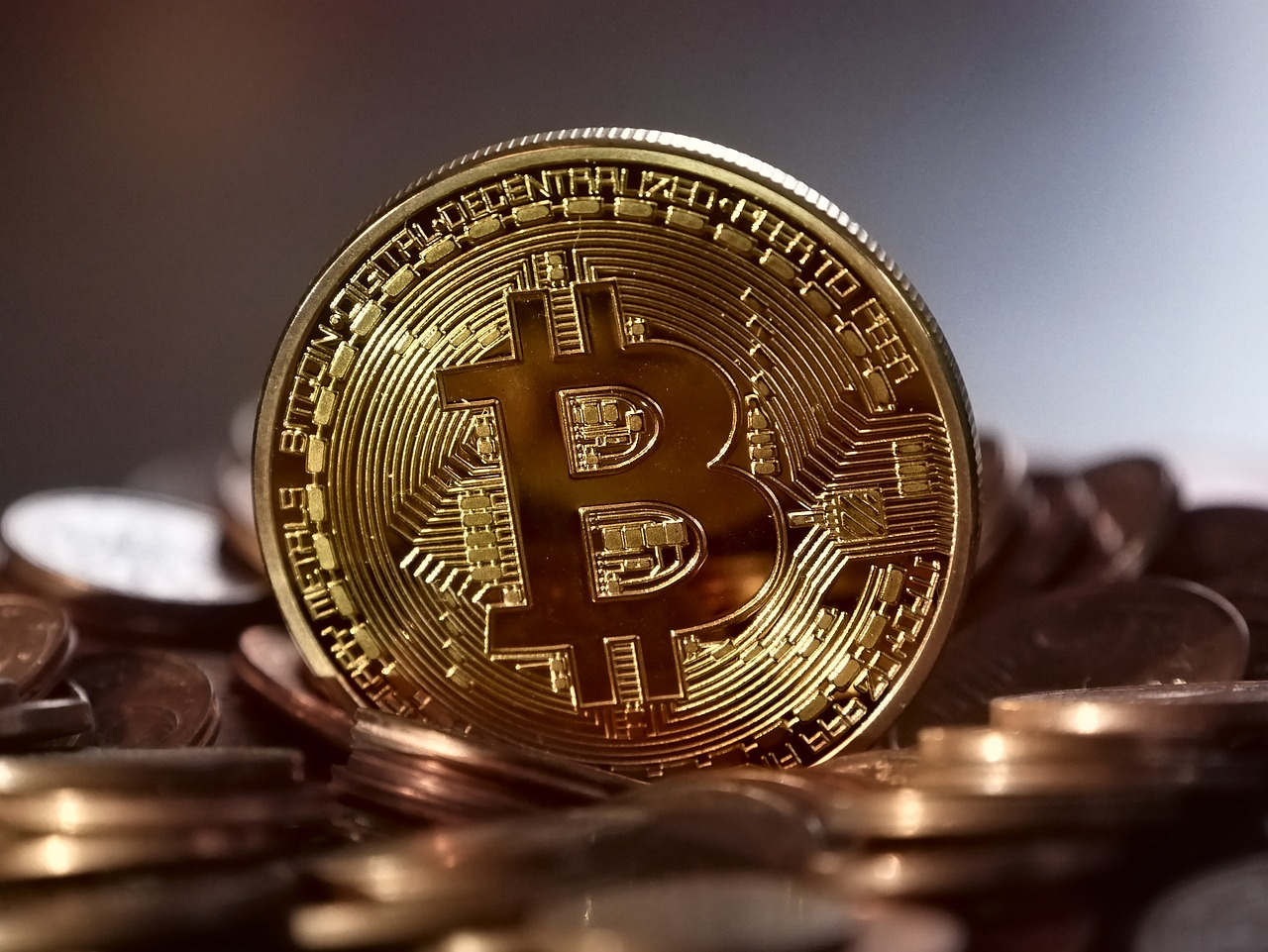Bircoin price