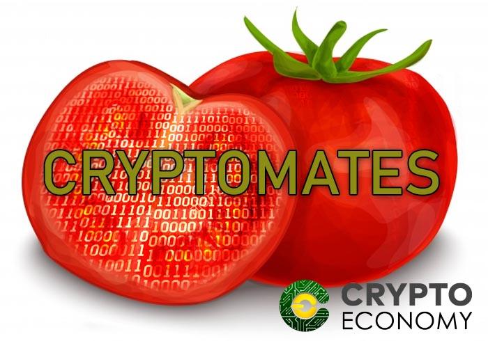 cryptomatoes minig heat