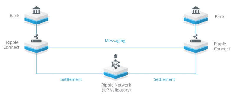 Ripple network for institutions