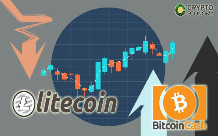 The prophecy of the creator of Litecoin [LTC] was fulfilled for a short time, BCH reaches maximum