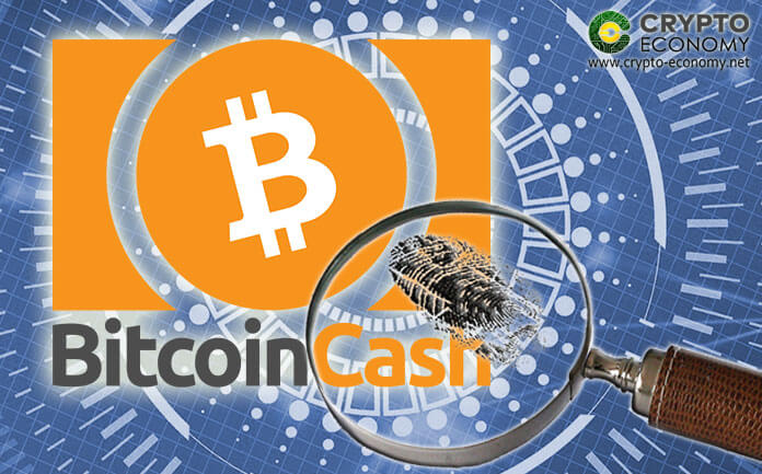 Bitcoin Cash [BCH] – A Single Address Accounts for More than Half of the Transactions over the Past Month