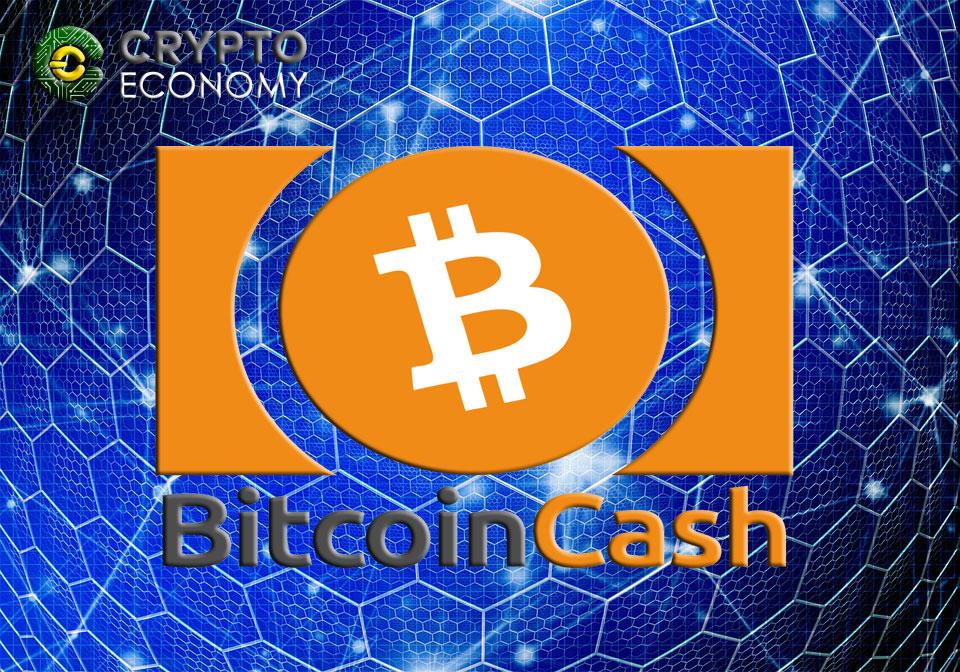 Developer Discovers A Bug in Bitcoin Cash