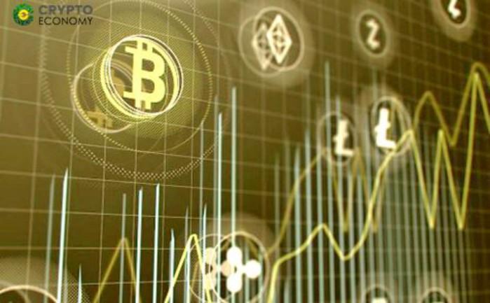 crypto business plus