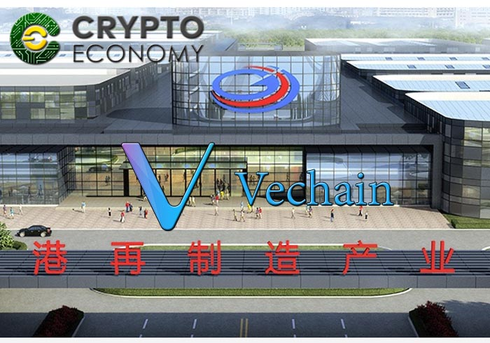 Vechain association group lingang