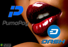 Dash pumapay Adult Entertainment