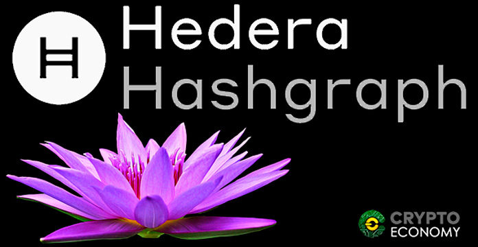 Hedera-Hashgraph