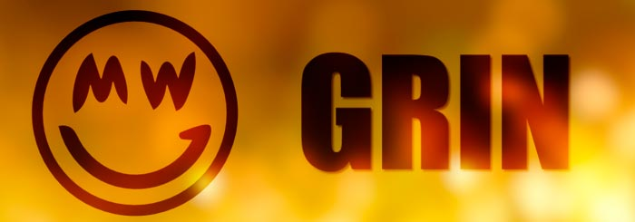 grin coin cryptocurrency to invest in 2019