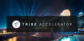 Singapore Blockchain Accelerator Tribe Signs with IBM, Citibank, and Ubisoft as Corporate Partners