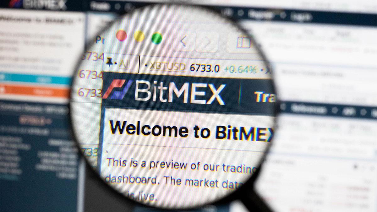 Bitmex-Exposed