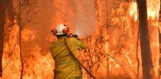 Binance Charity Arm Donates $1M towards the Australian Bushfires Benefit