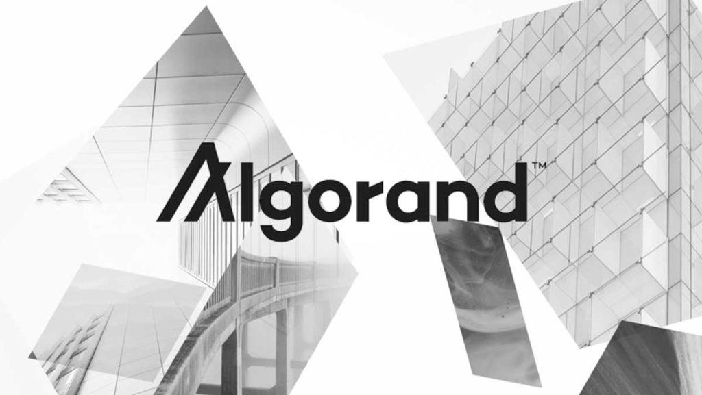 algorand-review