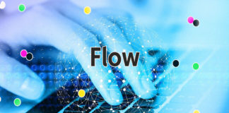 Flow blockchain launches Flow Playground for developers to test applications in the platform