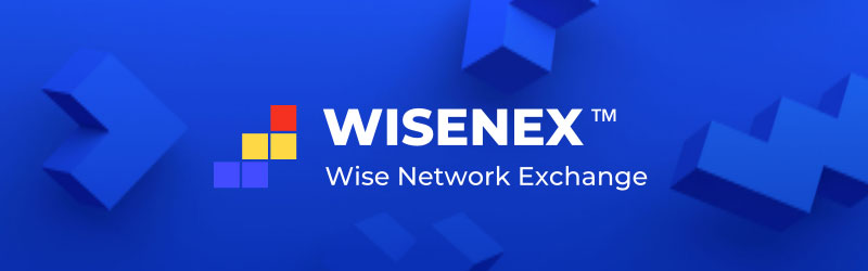wise network exchange