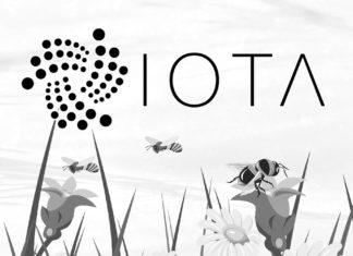 IOTA Published New Details About IOTA 2.0 Milestones;