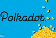 Polkadot Protocol Launches Community Vote for DOT Token Redenomination