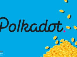 Polkadot Protocol Launches Community Vote for DOT Token Redenomination