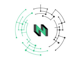 nervos network review