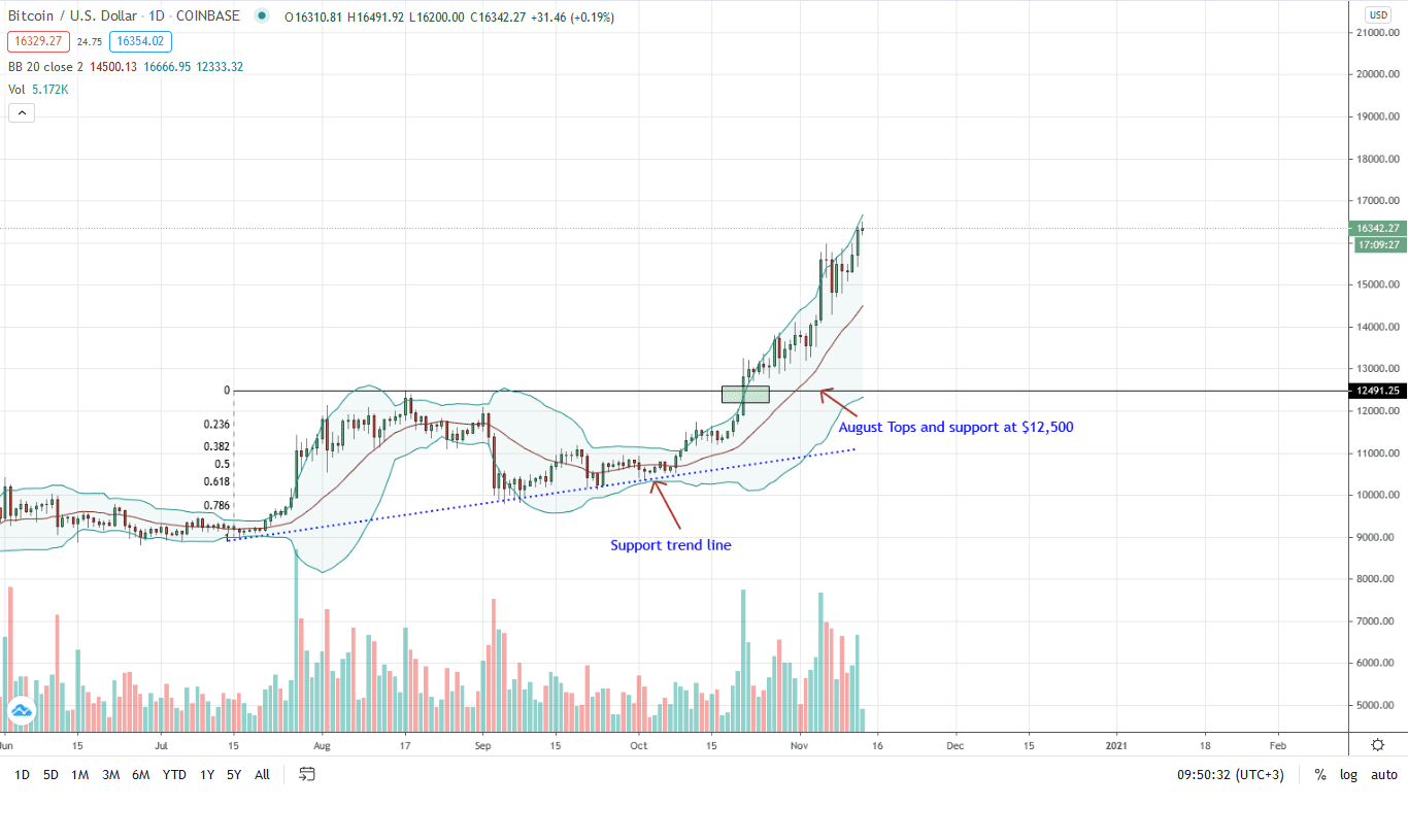 Bitcoin Daily Chart for Nov 13