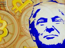 Vitalik Buterin: Prediction Markets are Pro-Trump