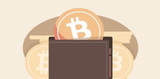 Bitcoin Monthly Active Addresses Hit 19.6 Million in November