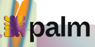 palm-nft