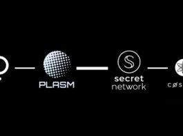 polkadot-plasm-secret-network-cosmos