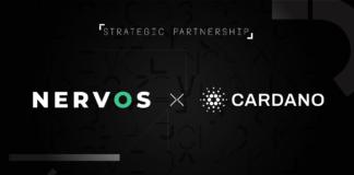 Cardano To Release Cross-chain Bridge Connecting Nervos Network