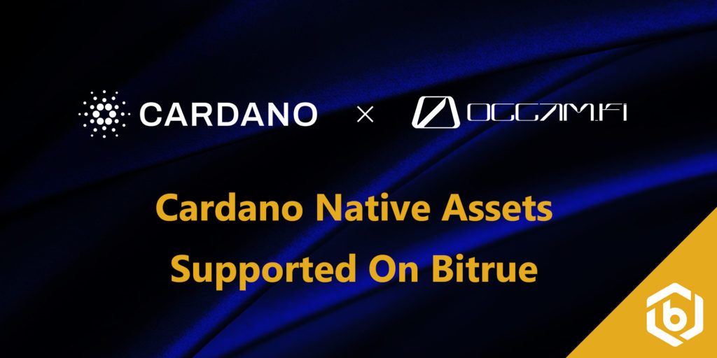 Cardano Meltdown: ADA plunges to 3-month low despite Bitrue update
