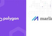 OpenWeaver Will Launch for Polygon; Decreasing the Latencies in Blocks