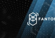 Looking into Fantom's [FTM] euphoric growth; what's next?