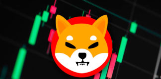shiba-coin-price-news